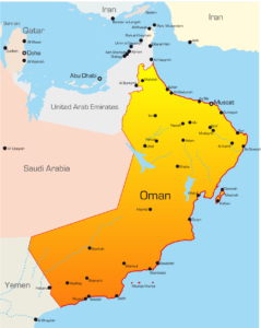 Oman Delegation Keen on CAiI's Power Generation Systems